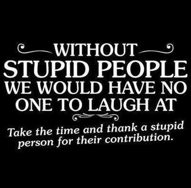 stupid thanks.jpg