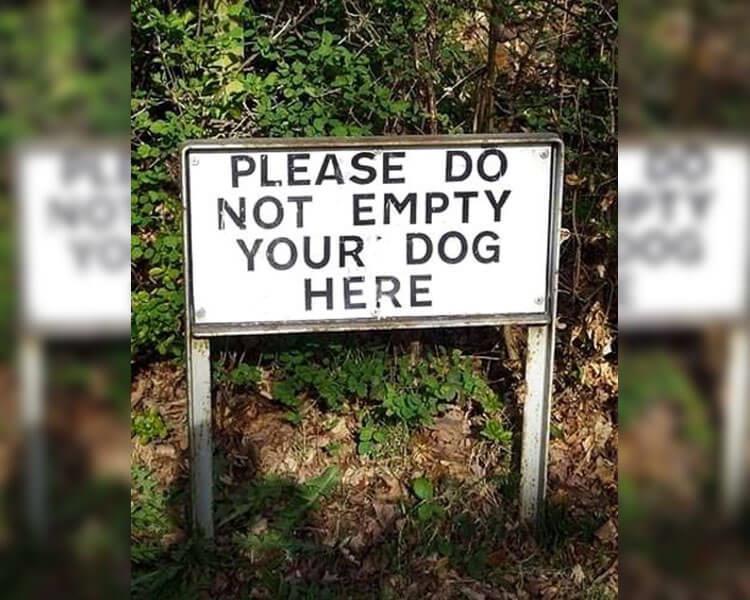 empty you r dog.jpg