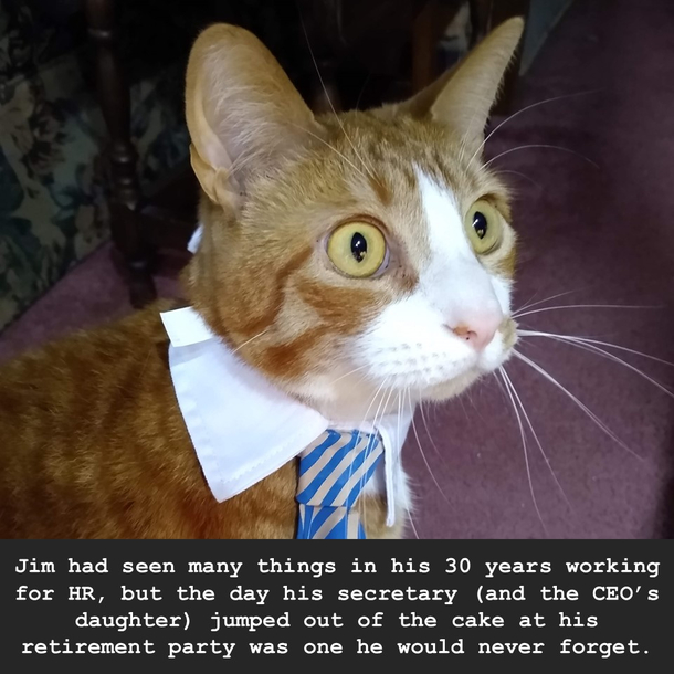 happy-retirement-404009.jpg