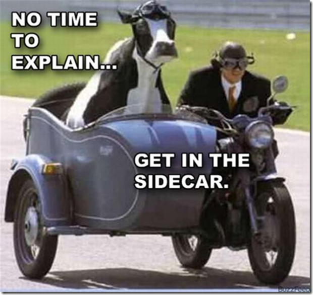 no-time-to-explain-cow-on-motorcycle.png