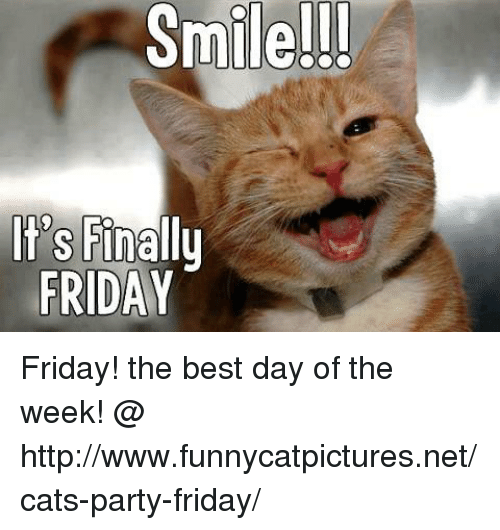 CAT SMile ile-its-finally-friday-friday-the-best-day-of-the-8185202.png