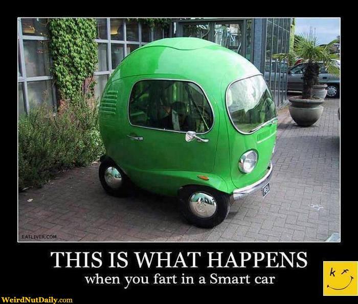 fart smart.jpg