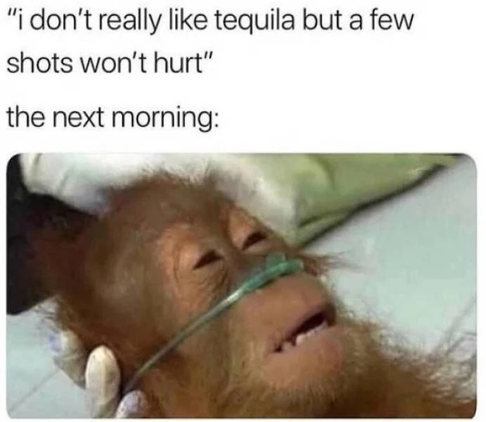 need_some_salt_with_these_tequila_memes-10.jpg