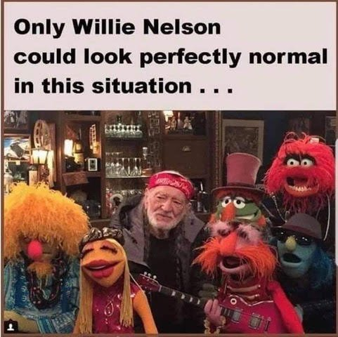 Willy Nelson and Muppets .jpg