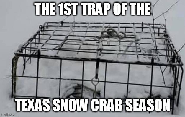 snow crab 2.jpg