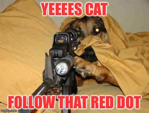 follow the red dot.jpg