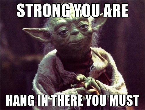 strong-you-are-hang-in-there-meme.jpg.1d228687615fa45b8882f20e725ff9a2.jpg